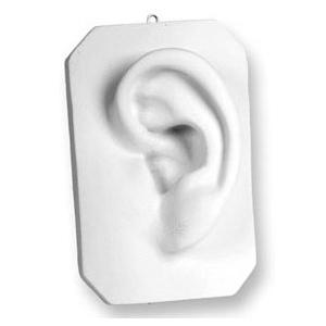 Sculpture House Plaster Cast-Ear