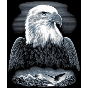 "Reeves™ Scraperfoil™ Scraperfoil Bald Eagle: Metallic, 8"" x 10"", (model PPSF22), price per each"