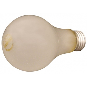 Speedball BBA #1 Photo Flood Bulb: 250 Watts