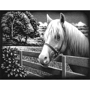 "Reeves™ Scraperfoil™ Scraperfoil Pony; Color: Metallic; Size: 8"" x 10""; (model PPSF50), price per each"