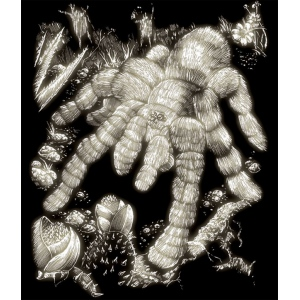 "Royal & Langnickel® Engraving Art Set Glow In The Dark Foil Tarantula; Board Size: 8"" x 10""; Color: Glow in the Dark; (model GLO14), price per set"