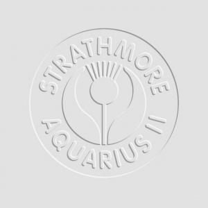 "Strathmore® Aquarius II® 500 Series 22"" x 30"" Cold Press Watercolor Sheets: White/Ivory, Sheet, 10 Sheets, 22"" x 30"", Cold Press, 80 lb, (model ST132-202), price per sheet"