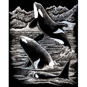 "Royal & Langnickel® Engraving Art Set Silver Foil Orca Whales; Board Size: 8"" x 10""; Color: Metallic; (model SILF19), price per set"