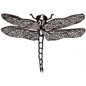 Sarasota Stamps Mounted Rubber Stamp Dragonfly Small; Material: Rubber; Mounted: Yes; (model SSD-772), price per each