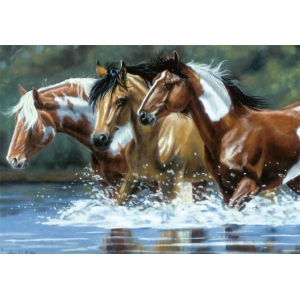 "Reeves™ Large Painting By Numbers Heading Upstream: 12"" x 16"", (model PBNACL3), price per each"