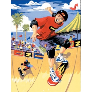 "Royal & Langnickel® Painting by Numbers™ 8 3/4 x 11 3/8 Junior Small Set Skateboarder; Board Size: 8 3/4"" x 11 3/8""; (model PJS22), price per set"