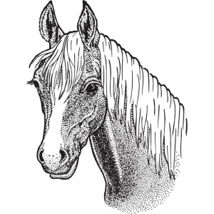 Sarasota Stamps Mounted Rubber Stamp Horse Head Large ; Material: Rubber; Mounted: Yes; (model SSL-3015), price per each