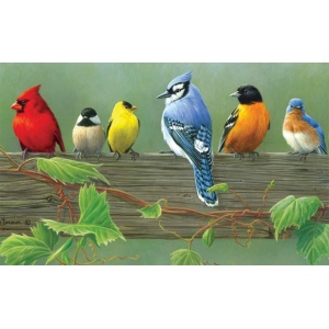 "Reeves™ Large Painting By Numbers Rail Birds: 12"" x 16"", (model PBNACL5), price per each"