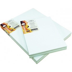 """Winsor & Newton™ Universal Stretched Canvas Cotton Twin Pack 18"""" x 24""""; Size: 18"""" x 24""""; Stretcher Bar Depth: 11/16""""; Type: Stretched; (model 6010128), price per each"""