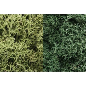 Woodland Scenics® Lichen Light Green: Green, 3 qt, Lichen, (model WSL167), price per each