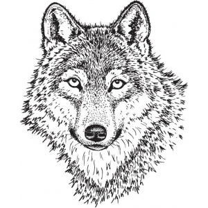Sarasota Stamps Mounted Rubber Stamp Wolf Face Large ; Material: Rubber; Mounted: Yes; (model SSL-3008), price per each