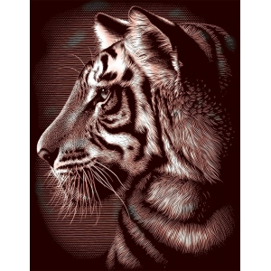 "Reeves™ Scraperfoil™ Gold Foil Tiger; Color: Multi; Size: 8"" x 10""; (model PPCF29), price per each"