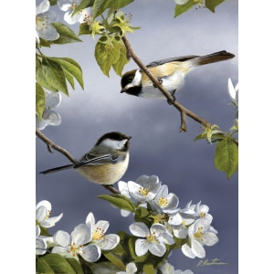 "Reeves™ Medium Painting By Numbers Spring Chicadee: Multi, 9"" x 12"", (model PBNACM6), price per each"