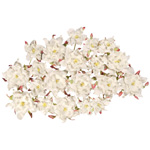 "Dimensional Paper Flowers White; Color: White/Ivory; Material: Paper; Size: 2"", 3""; Type: Dimensional; (model BHS107519), price per box"