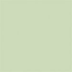 Copic® Sketch Spring Dim Green Marker; Color: Green; Double-Ended: Yes; Ink Type: Alcohol-Based; Refillable: Yes; Tip Type: Broad Nib, Brush Nib; (model G82-S), price per each