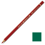 Faber-Castell Polychromos Artist Colour Pencil: Hooker's Green
