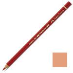 Faber-Castell Polychromos Artist Colour Pencil: Cinnamon