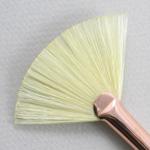 Chungking Hog Bristle 1300: Fan Size 10 Brush