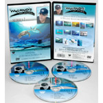Wyland Art Studio DVD: 13 Episodes, Series 3 (6.5 Hour)