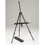 Integra Field and Studio Easel: Model # 92-AE018
