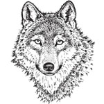 Sarasota Stamps Mounted Rubber Stamp Wolf Face Large : Rubber, Mounted, (model SSL-3008), price per each