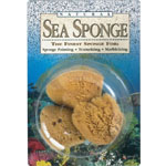 Hydra® Natural Sea Sponge; Material: Natural; Type: Sponge; (model SS23), price per pack