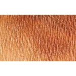 Da Vinci Artists' Iridescent Watercolor Paint 15ml Burnt Sienna: Brown, Tube, 15 ml, Watercolor, (model DAV2205-1F), price per tube