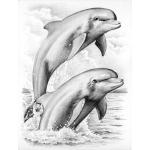"Reeves Sketching by Numbers Advanced Range: Medium Board, Dolphins, 9 1/16"" x 11 7/8"""