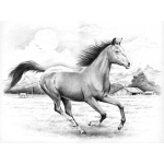 """Reeves Sketching by Numbers Advanced Range: Large Board, Galloping Horses, 15 9/16""""l x 11 9/16""""w"""