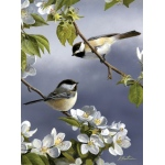 "Reeves™ Medium Painting By Numbers Spring Chicadee; Color: Multi; Size: 9"" x 12""; (model PBNACM6), price per each"