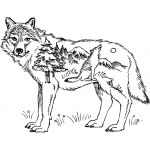 Sarasota Stamps Mounted Rubber Stamp: Deco Wolf