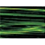 Gamblin Artists' Grade FastMatte Alkyd Oil Paint 37ml Sap Green: Green, Tube, 37 ml, Alkyd Oil, (model GF1660), price per tube