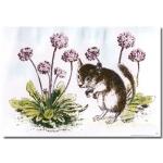 La Blanche Little Edgar Between Flowers