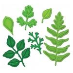 Spellbinders Shapeabilities: Foliage