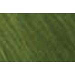 Shiva® Paintstik® Oil Paint Artist Color Meadow Green; Color: Green; Format: Stick; Type: Oil; (model SP121244), price per each