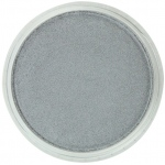 PanPastel® Ultra Soft Artists' Painting Pastel Pewter 9ml: Metallic, Pan, Soft, (model PP29215), price per each