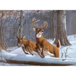 "Royal & Langnickel® Painting by Numbers™ 12 3/4 x 15 3/4 Adult Set White Tails; Board Size: 12 3/4"" x 15 3/4""; (model PAL34), price per set"