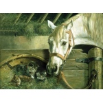 Reeves™ Large Painting By Numbers Horse And Kitten; (model PBNACL10), price per each