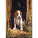 """Royal & Langnickel® Painting by Numbers™ 8 3/4 x 11 3/8 Junior Small Set Beagle Puppy: 8 3/4"""" x 11 3/8"""", (model PJS58), price per set"""