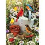 "Royal & Langnickel® Painting by Numbers™ 8 3/4 x 11 3/8 Junior Small Set Garden Birds; Board Size: 8 3/4"" x 11 3/8""; (model PJS71), price per set"
