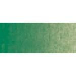 Winsor & Newton™ Winton Oil Color 37ml Sap Green: Green, Tube, 37 ml, Oil, (model 1414599), price per tube