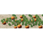 "Wee Scapes™ Architectural Model Pumpkins: Orange, 150 sq in, Poly Fiber, Turf, 2-Pack, 1"", Flowers, (model WS00395), price per 2-Pack"