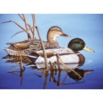 "Royal & Langnickel® Painting by Numbers™ 12 3/4 x 15 3/4 Adult Set Blue Water Mallards; Board Size: 12 3/4"" x 15 3/4""; (model PAL38), price per set"