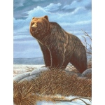 """Royal & Langnickel® Painting by Numbers™ 8 3/4 x 11 3/8 Junior Small Set Grizzly Bear: 8 3/4"""" x 11 3/8"""", (model PJS82), price per set"""