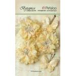 Petaloo - Mums & Butterflies - Ivory
