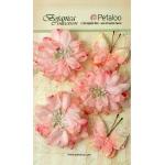 Petaloo - Mums & Butterflies - Soft Pink