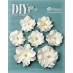 Petaloo - DIY Paintables - Mini Wild Roses x 7 - White