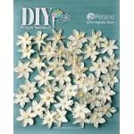 Petaloo - DIY Paintables - Mini Pearl Daisies x 40 - All Whites
