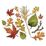 Sizzix - Thinlits Die Set 14PK - Fall Foliage by Tim Holtz