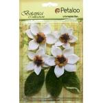 Petaloo - Vintage Velvet Magnolia x 4 - White